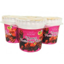 4 x 125 g Yaourt Fruits des...